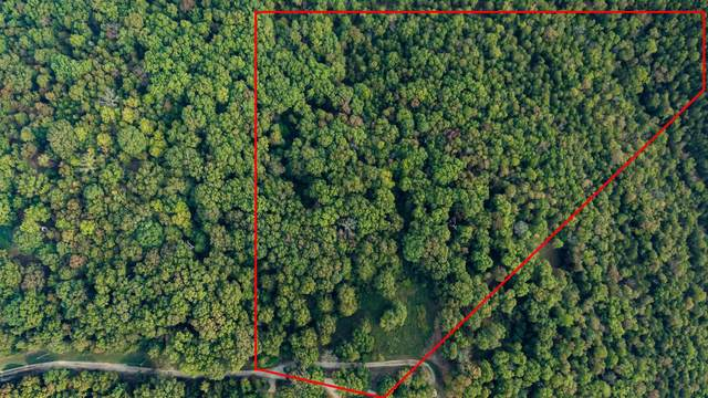 348 Shady Valley Estates, Galena, MO 65656 (MLS #60203033) :: Lakeland Realty, Inc.