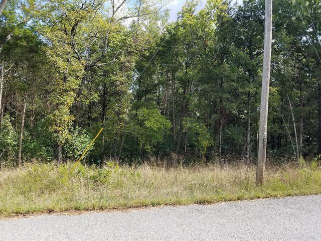 234 Goldfinch Lane, Shell Knob, MO 65747 (MLS #60203042) :: Sue Carter Real Estate Group