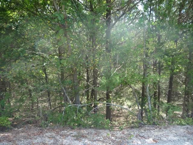 000 Lot 8 Redbud, Kimberling City, MO 65686 (MLS #60203089) :: Sue Carter Real Estate Group