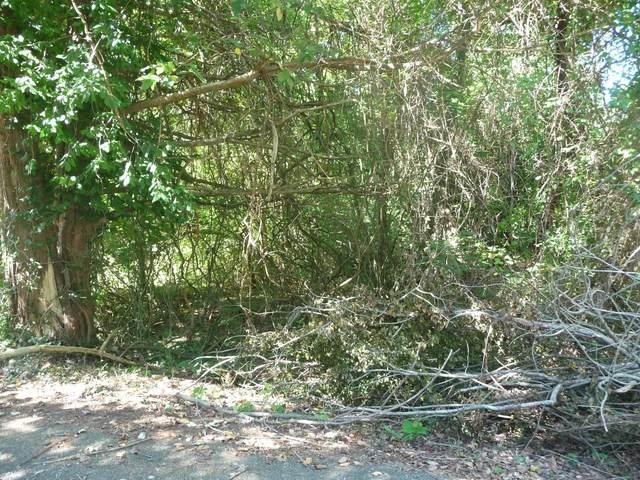 000 Lot 13 Trail Ridge Drive, Kimberling City, MO 65686 (MLS #60203096) :: Sue Carter Real Estate Group