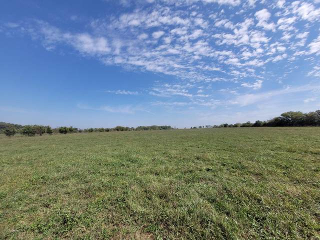 000 H Highway, Greenfield, MO 65661 (MLS #60203144) :: Clay & Clay Real Estate Team