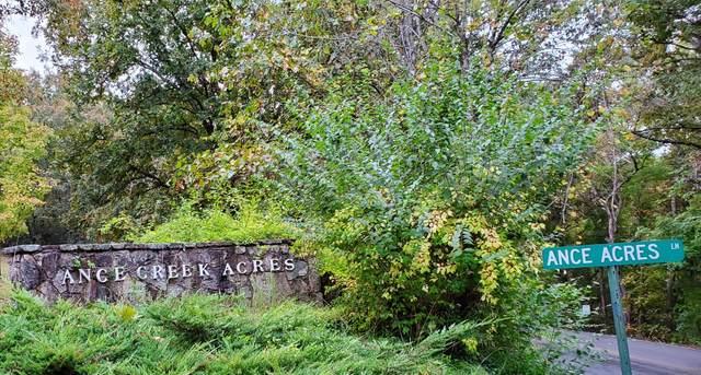Lot 23 Ance Acres Lane Lane, Reeds Spring, MO 65737 (MLS #60203226) :: Sue Carter Real Estate Group