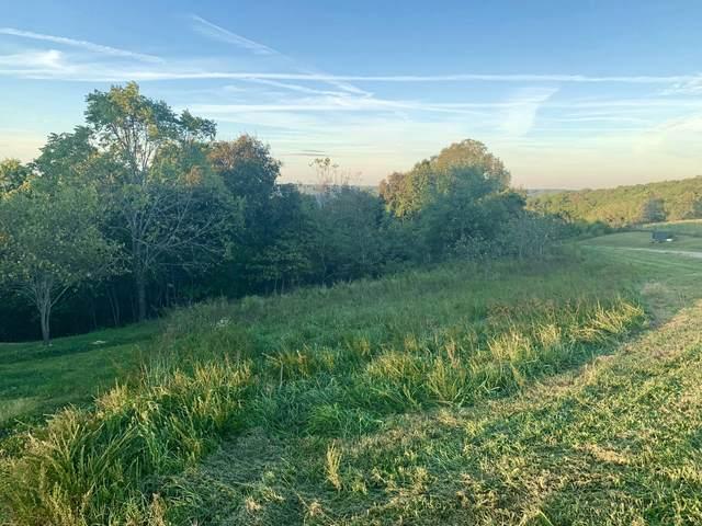 Lot 107 Gavins Trail, Walnut Shade, MO 65771 (MLS #60203406) :: Sue Carter Real Estate Group
