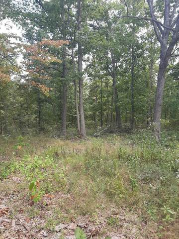 000 Pine Flat Drive, Summersville, MO 65571 (MLS #60203444) :: Clay & Clay Real Estate Team