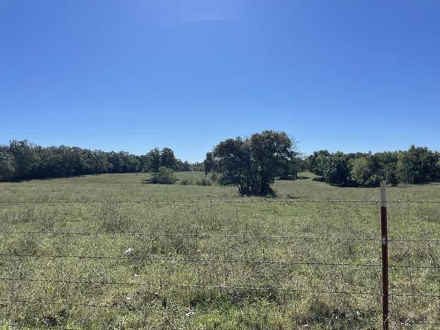 000 Blackfoot Hollow Road, Anderson, MO 64831 (MLS #60203501) :: Sue Carter Real Estate Group
