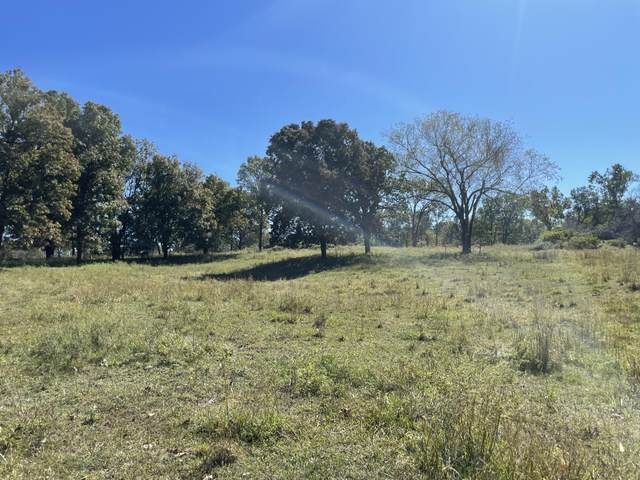 000 Lawhorn Road, Anderson, MO 64831 (MLS #60203503) :: Sue Carter Real Estate Group