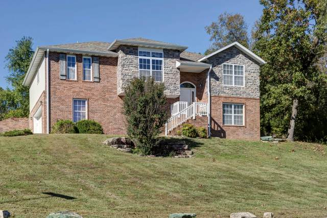 273 Shadow View Drive, Branson, MO 65616 (MLS #60203598) :: The Real Estate Riders