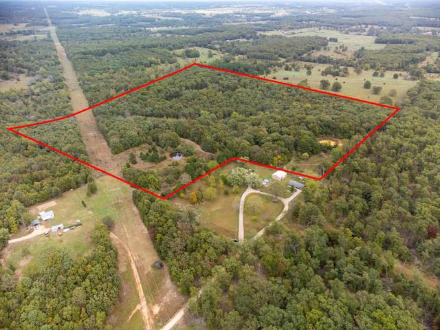 Tbd County Road 4060, West Plains, MO 65775 (MLS #60203607) :: Sue Carter Real Estate Group
