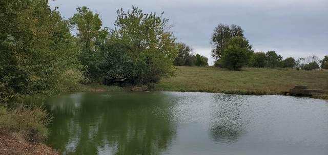 000 W Farm Rd 64 & Par. 880615200002, Ash Grove, MO 65604 (MLS #60203639) :: Evan's Group LLC