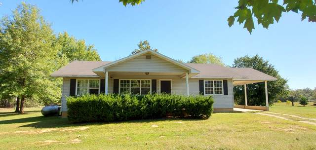 10230 County Road 8150, West Plains, MO 65775 (MLS #60203642) :: Sue Carter Real Estate Group