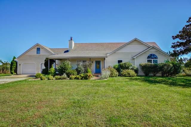 18620 Durango Lane, Phillipsburg, MO 65722 (MLS #60203688) :: Sue Carter Real Estate Group