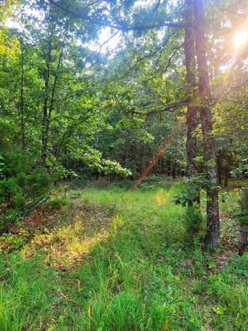 000 State Hwy J, Stockton, MO 65785 (MLS #60203699) :: Sue Carter Real Estate Group