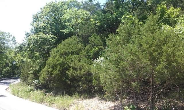 000 Cahill, Branson, MO 65616 (MLS #60203790) :: Sue Carter Real Estate Group