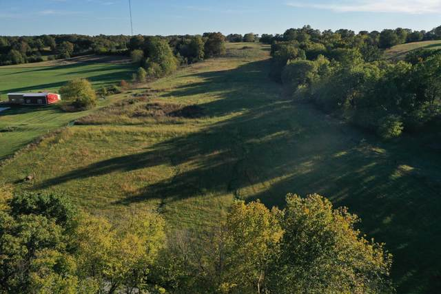 000 Panther Creek Road, Fordland, MO 65652 (MLS #60203826) :: Team Real Estate - Springfield