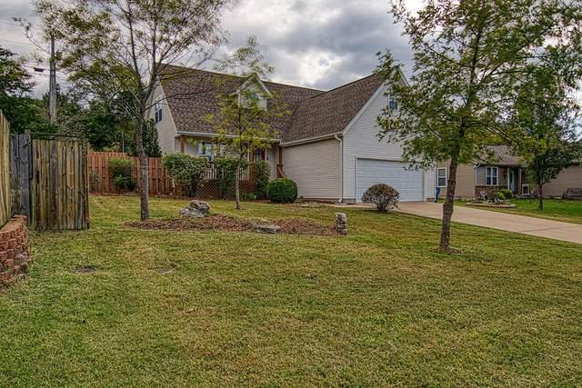 117 Cedar Lane, Branson, MO 65616 (MLS #60203830) :: Team Real Estate - Springfield