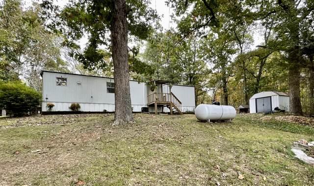 275 Warner Road, Crane, MO 65633 (MLS #60203850) :: Team Real Estate - Springfield