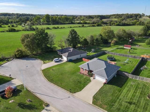 713 W Christopher Lane, Clever, MO 65631 (MLS #60203868) :: Evan's Group LLC