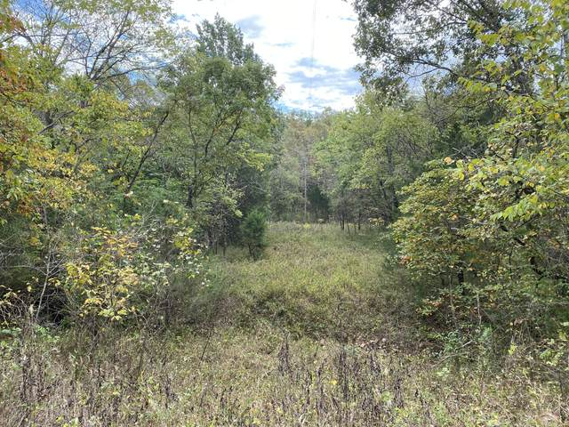 000 Tbd County Road 938, Squires, MO 65755 (MLS #60203880) :: The Real Estate Riders