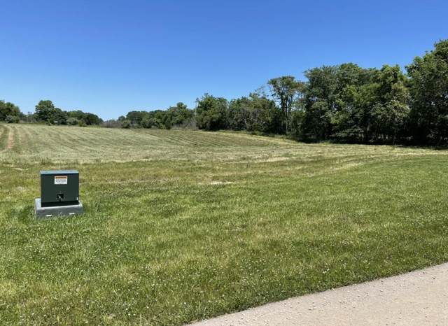 Lot 8 Southernview Estates, Ozark, MO 65721 (MLS #60203934) :: Team Real Estate - Springfield