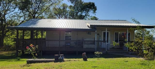 1062 Sam Day Road, Bradleyville, MO 65614 (MLS #60203963) :: Team Real Estate - Springfield