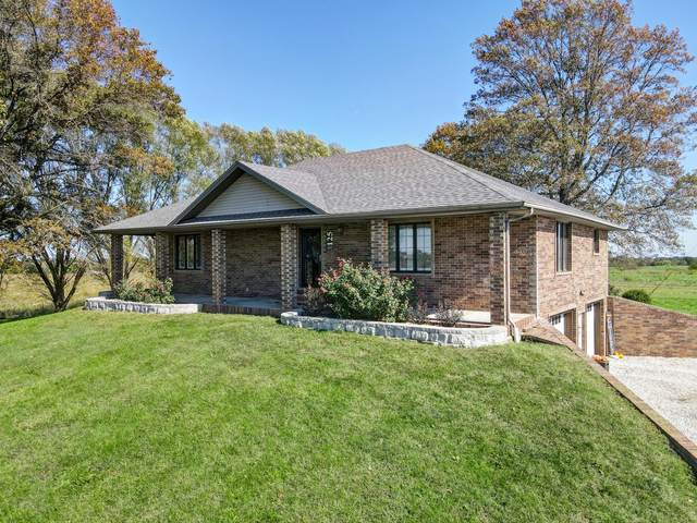 125 Capetti Drive, Crane, MO 65633 (MLS #60204034) :: Sue Carter Real Estate Group
