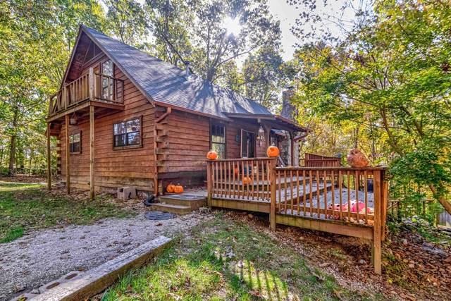 218 Springview Drive, Highlandville, MO 65669 (MLS #60204105) :: The Real Estate Riders