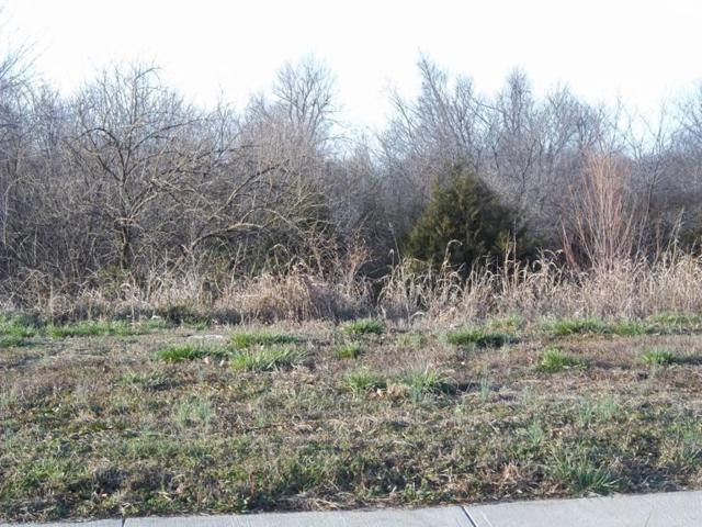 1149 E Headley Avenue L48, Springfield, MO 65803 (MLS #10621705) :: Team Real Estate - Springfield