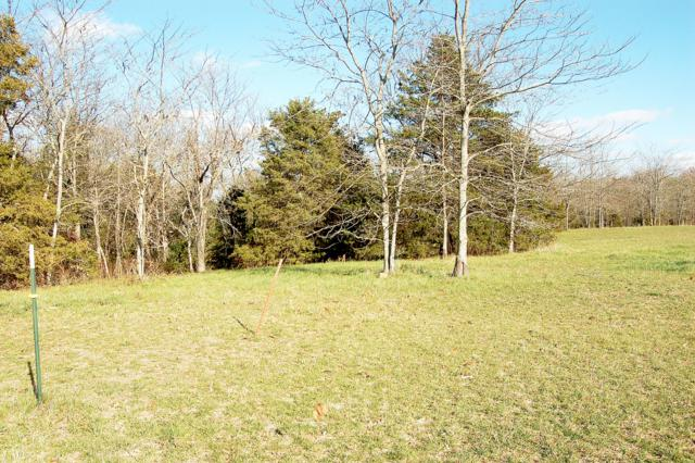 Lot 11 Kicking Mule Lane, Lampe, MO 65681 (MLS #60013514) :: Sue Carter Real Estate Group