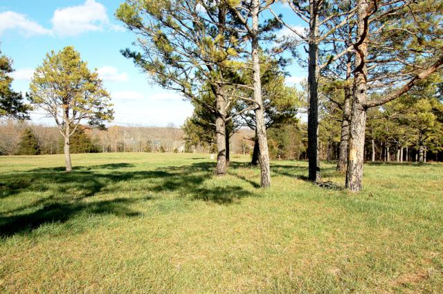 Lot 12 Kicking Mule Lane, Lampe, MO 65681 (MLS #60013516) :: Sue Carter Real Estate Group