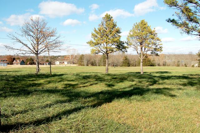 Lot 13 Kicking Mule Lane, Lampe, MO 65681 (MLS #60013519) :: Sue Carter Real Estate Group