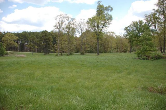 000 Kelsey Drive Lot 170, West Plains, MO 65775 (MLS #60017553) :: Sue Carter Real Estate Group