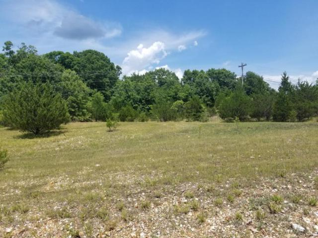 Lot 36 Buttonwood Drive, Kimberling City, MO 65686 (MLS #60020756) :: Greater Springfield, REALTORS