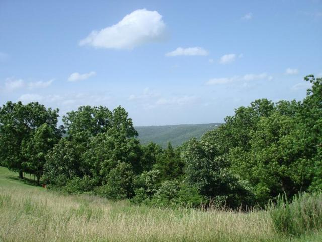 Tbd Whitetail Crossing Lots, Walnut Shade, MO 65771 (MLS #60029092) :: Team Real Estate - Springfield