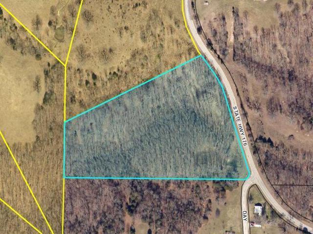 Lot 1 Hwy 176, Chestnutridge, MO 65630 (MLS #60030296) :: Team Real Estate - Springfield