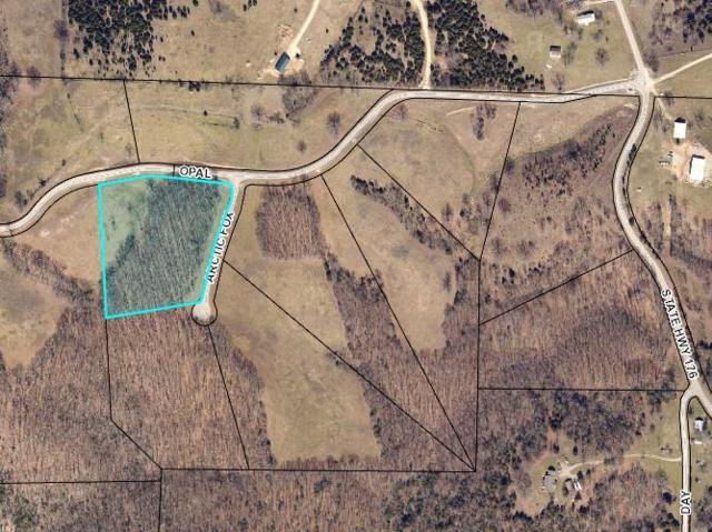 Lot 8 Arctic Fox, Chestnutridge, MO 65630 (MLS #60030310) :: Team Real Estate - Springfield