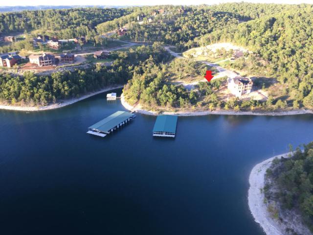 123 Joseph Cove, Lampe, MO 65681 (MLS #60034972) :: Team Real Estate - Springfield