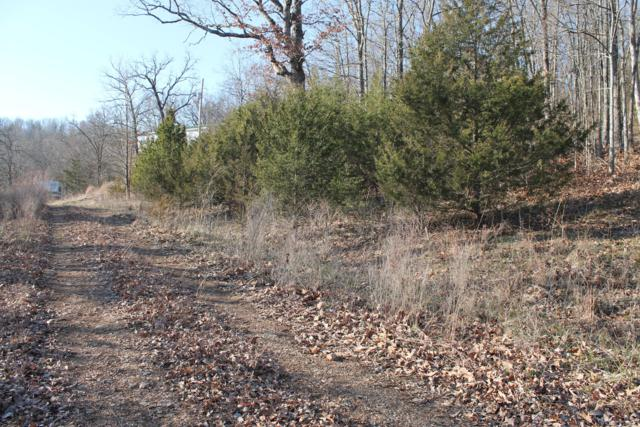 Lot 226 Crestridge Circle, Branson West, MO 65737 (MLS #60045414) :: Sue Carter Real Estate Group