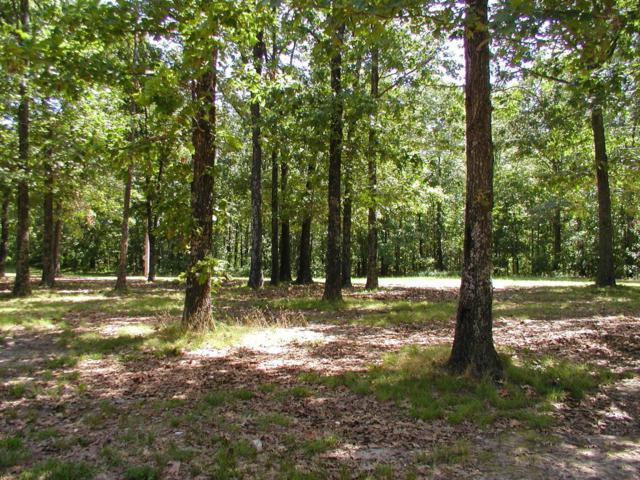 9 Dogwood Circle, West Plains, MO 65775 (MLS #60051363) :: Good Life Realty of Missouri