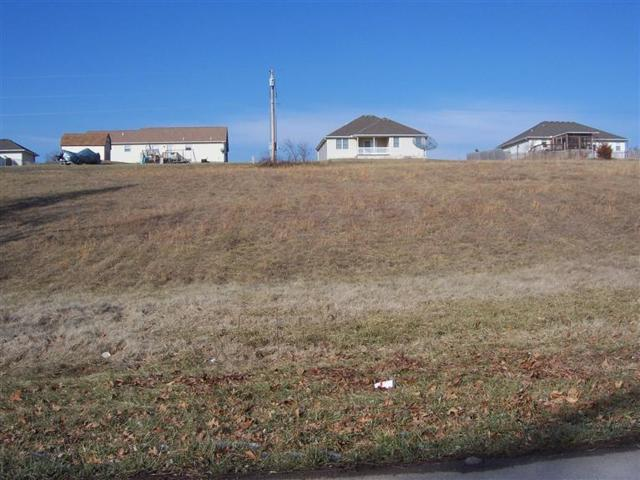 Lot 3 Mcvey Street, Mt Vernon, MO 65712 (MLS #60055195) :: Team Real Estate - Springfield