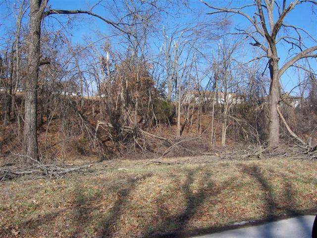 Lot 6 Mcvey Street, Mt Vernon, MO 65712 (MLS #60055201) :: Team Real Estate - Springfield