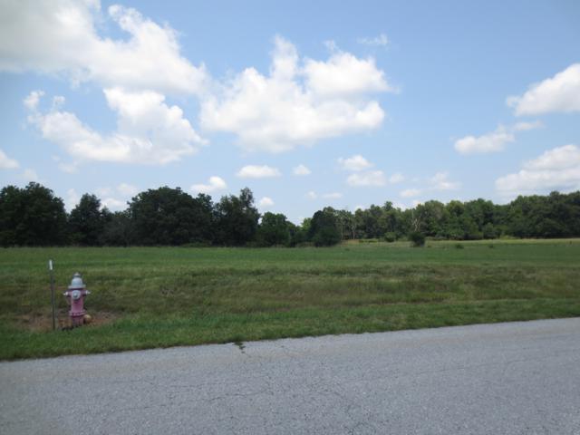 Lot 62 Robins Nest Hill, Mt Vernon, MO 65712 (MLS #60055435) :: Massengale Group