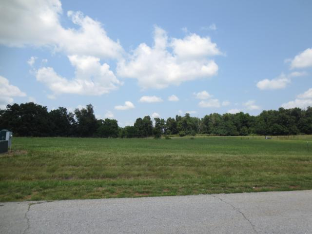 Lot 63 Robins Nest Hill, Mt Vernon, MO 65712 (MLS #60055436) :: Clay & Clay Real Estate Team