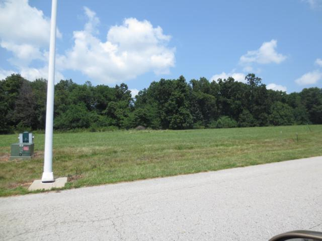 Lot 69 Robins Nest Hill, Mt Vernon, MO 65712 (MLS #60055444) :: Sue Carter Real Estate Group