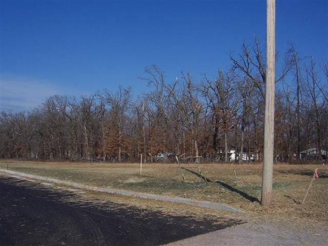 L 7 Mcvey Street, Mt Vernon, MO 65712 (MLS #60055463) :: Team Real Estate - Springfield