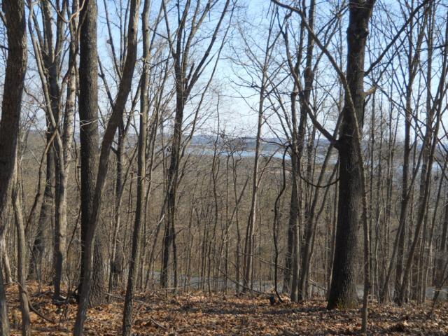 Lot 1 Lovers Lane, Branson West, MO 65737 (MLS #60073441) :: Sue Carter Real Estate Group