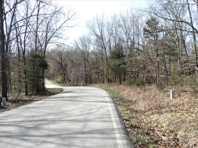 Lot 1 Whispering Oaks Drive, Galena, MO 65656 (MLS #60073684) :: Good Life Realty of Missouri
