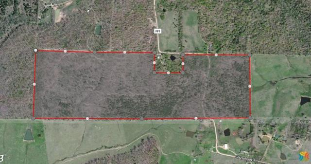 Tbd County Road Ff-1, Doniphan, MO 63935 (MLS #60073959) :: Greater Springfield, REALTORS