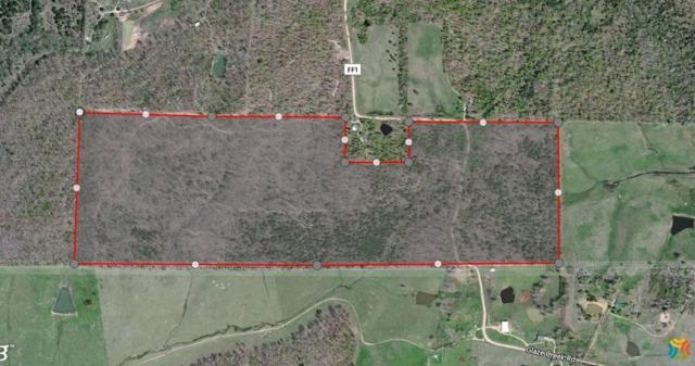 Tbd County Road Ff-1, Doniphan, MO 63935 (MLS #60073959) :: Good Life Realty of Missouri