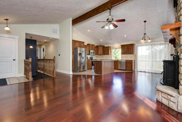 215 Dogwood Lane, Highlandville, MO 65669 (MLS #60080358) :: Select Homes