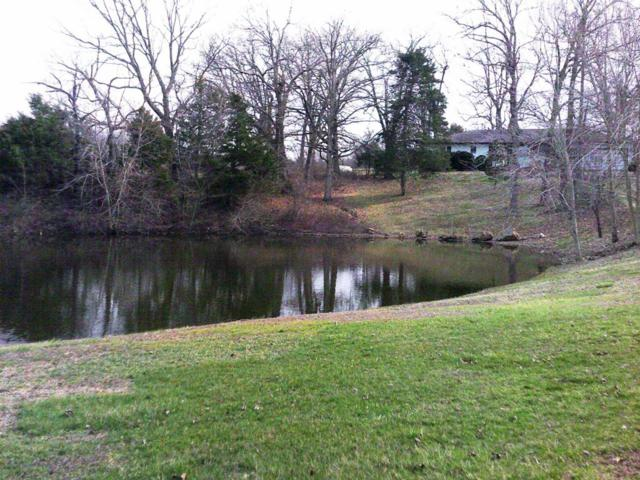 20857 Farm Road 2012, Crane, MO 65633 (MLS #60091255) :: Team Real Estate - Springfield